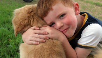 Animal de estimação para crianças