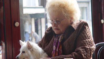 Cachorro sente quando alguém vai morrer?